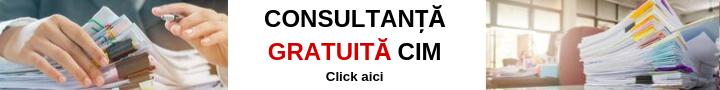 Consultanta gratuita control intern managerial