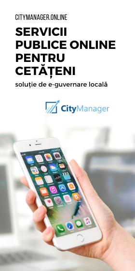 solute e-guvernare locala